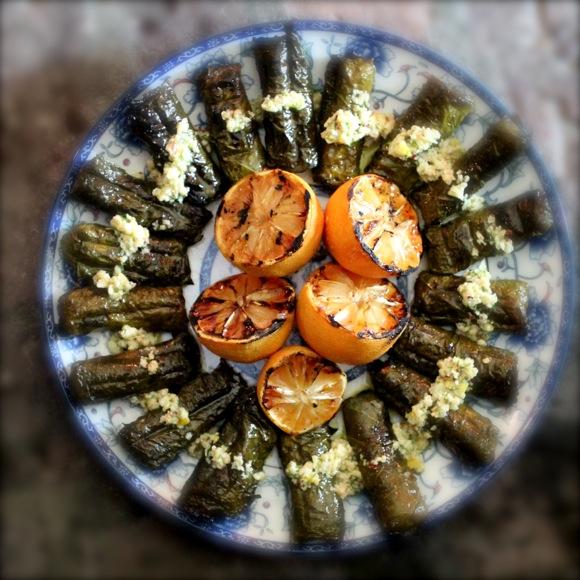 Grilled Salmon Dolmades, Pine Nut Lemon Sauce